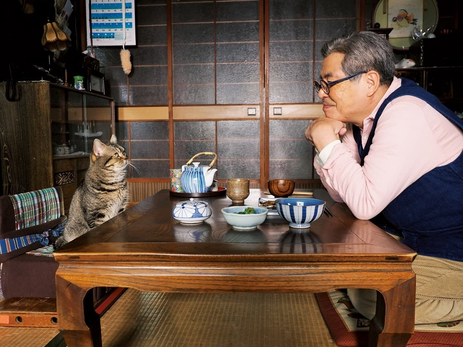 The Island of Cats (2019) อยู่กับแมว - Pantip