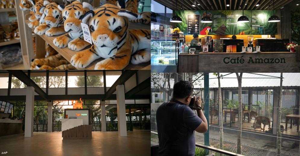 จิบกาแฟดูเสือ เล่นกับเสือแบบชิดใกล้ที่ Tiger PARK Pattaya - Pantip