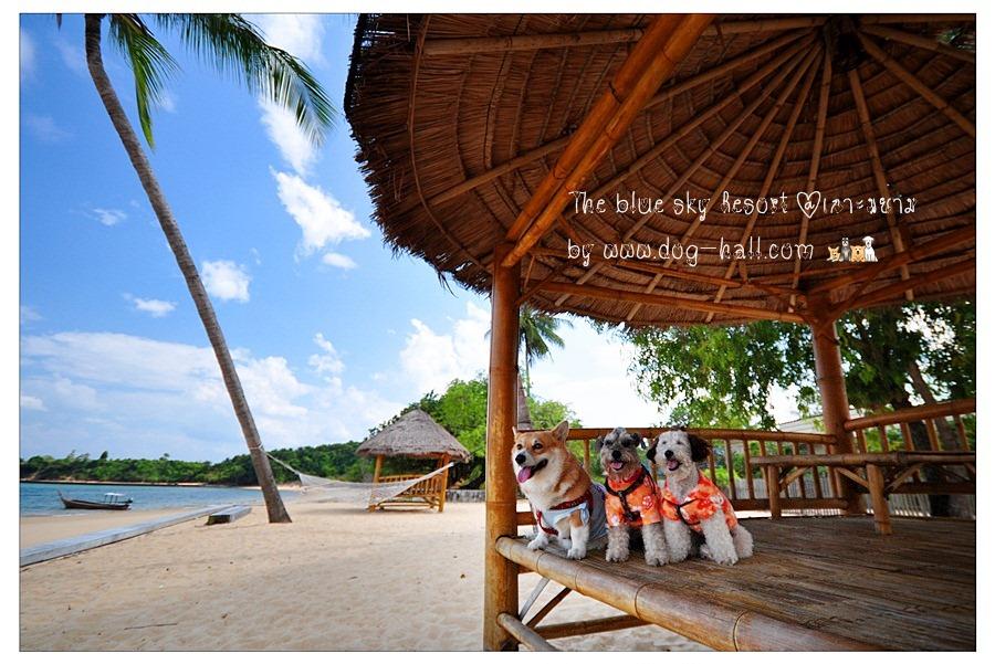 บลูสกาย รีสอร์ท เกาะพยาม ระนอง ที่พัก การเดินทาง รีสอร์ท บูติกรีสอร์ท โรงแรม