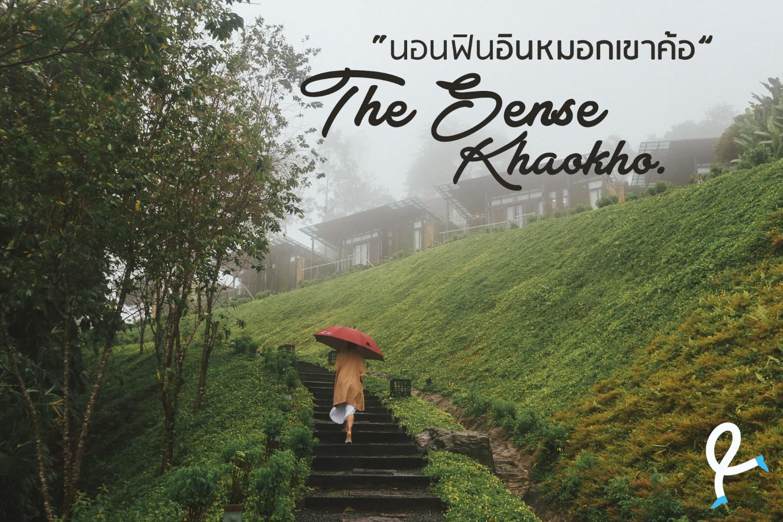 ร ว ว The Sense เขาค อ เพชรบ รณ นอนฟ นอ นหมอก Pantip
