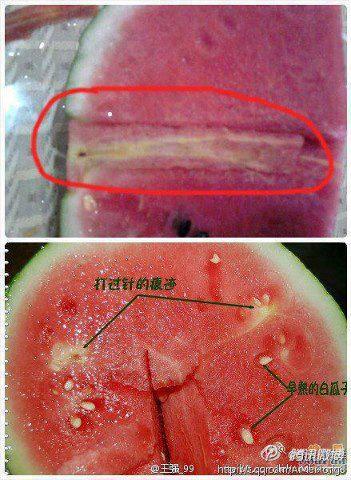 วิธีเลือกแตงโม