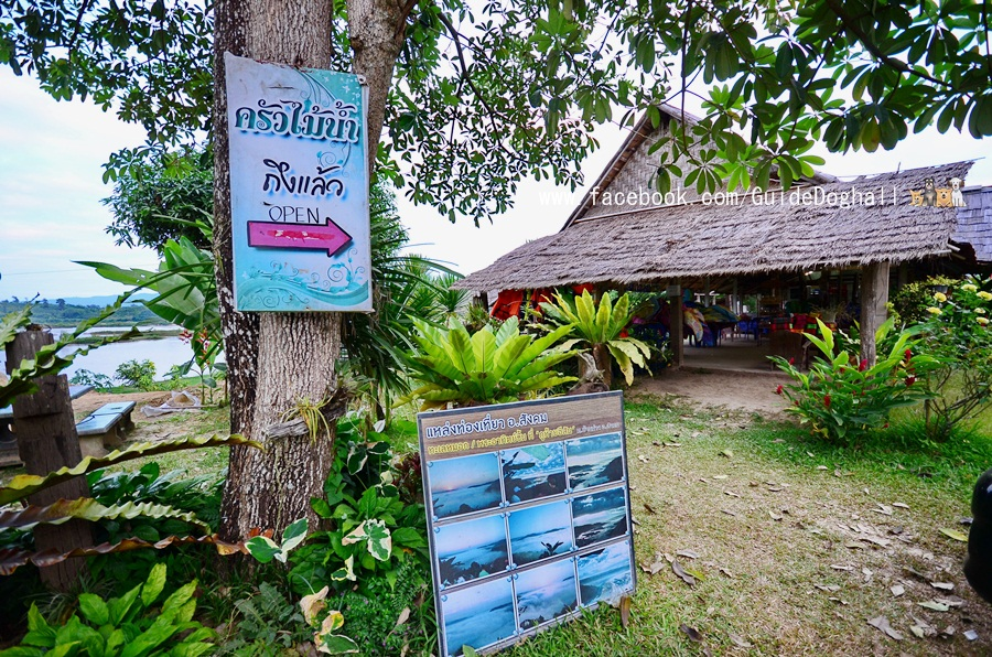 ที่เที่ยว ภูทอก ภูห้วยอีสัน น้ำตกธารทิพย์ แม่โขงริเวอร์วิว ครัวไม้น้ำ รัก ณ เชียงคาน รีสอร์ท เลย หนองคาย Doghall halloffame เที่ยวเมืองไทย ไทยเที่ยวไทย เที่ยวทั่วไทย เว็บท่องเที่ยว