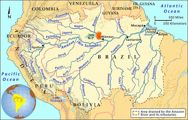 มาเด้อออ....เที่ยวป่าอะเมซอน บราซิล ตอนไปตกปลาปิรันย่า พ่ะน่ะ