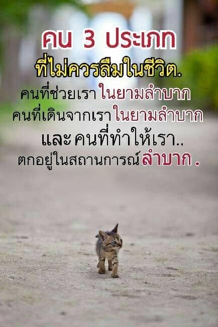 [Image: p8vh66eyqCo2rTC1LAE-o.jpg]