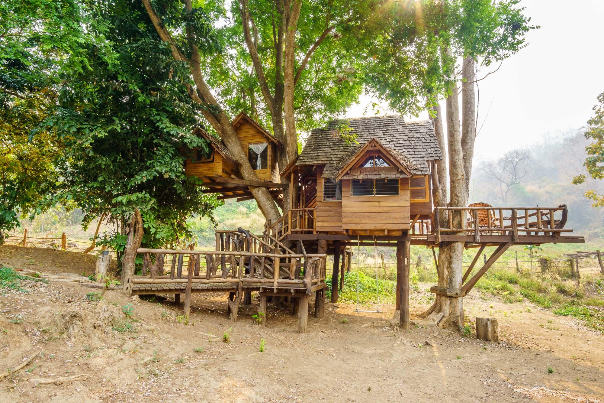 ผลการค้นหารูปภาพสำหรับ บ้านต้นไม้