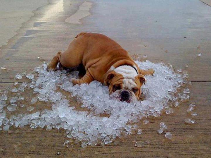 คลายร้อน