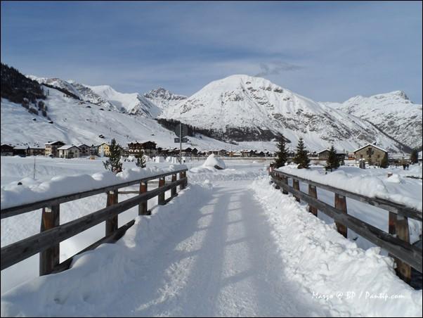 หิมะ สนิทเทพนิรมิตขายความเชี่ยวชาญพร้อมทั้งวิถีชีวิตจำพวกปฐมภูมิ
