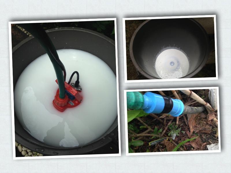 วิธีกำจัดปลวกแบบไร้สารเคมี