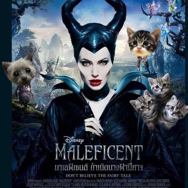 ไปด แล วมาเล าให ฟ ง Maleficent มาเลฟ เซนท กำเน ด